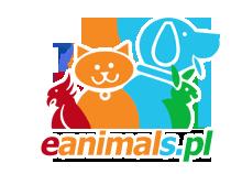 Archiwa: hodowla kotów - eanimals.pl
